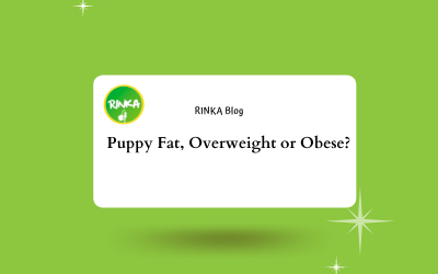 Is my child overweight or can I call it puppy fat?